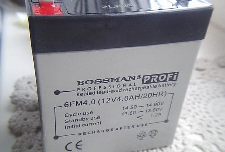 Необслуживаемый свинцово-кислотный герметизированный аккумулятор Bossman PROFI 6FM4.0 (12V4.0AH/HR).